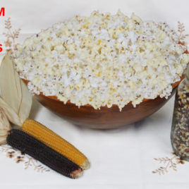 California Grown Organic Popcorn Kernels (Multi-Colored)